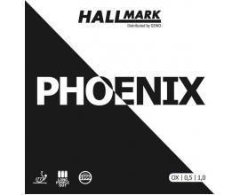 Hallmark / Phoenix