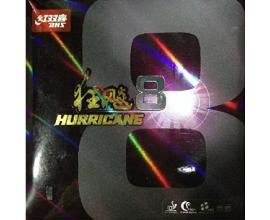 DHS / Hurricane 8