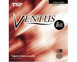 TSP / Ventus Basic